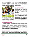 0000071875 Word Template - Page 4