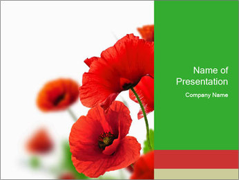 0000071878 PowerPoint Template - Slide 1
