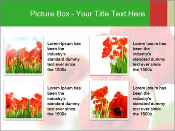 0000071878 PowerPoint Template - Slide 14