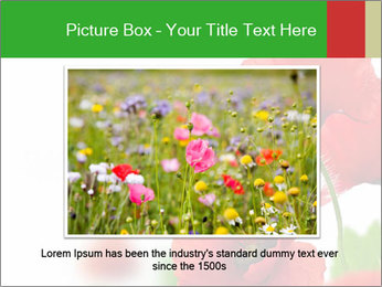 0000071878 PowerPoint Template - Slide 15