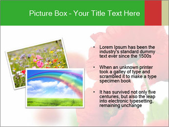 0000071878 PowerPoint Template - Slide 20