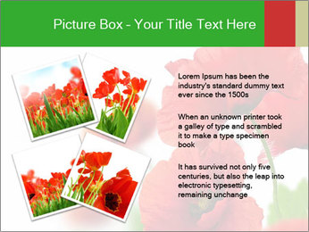 0000071878 PowerPoint Template - Slide 23