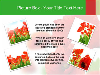 0000071878 PowerPoint Template - Slide 24