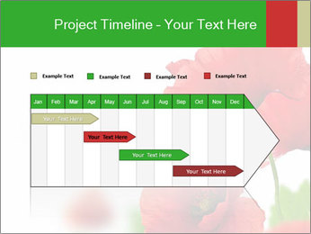 0000071878 PowerPoint Template - Slide 25
