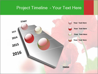 0000071878 PowerPoint Template - Slide 26