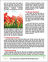 0000071878 Word Templates - Page 4