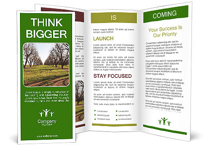 0000071883 Brochure Template