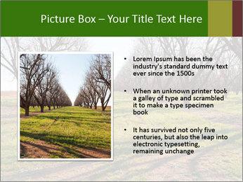 0000071883 PowerPoint Templates - Slide 13