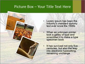 0000071883 PowerPoint Templates - Slide 17