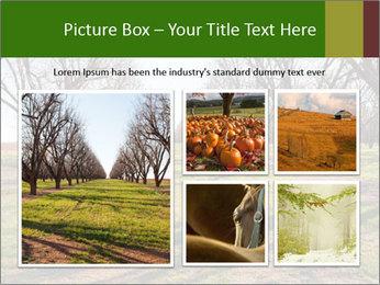 0000071883 PowerPoint Templates - Slide 19
