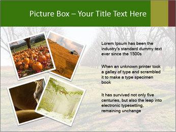 0000071883 PowerPoint Templates - Slide 23