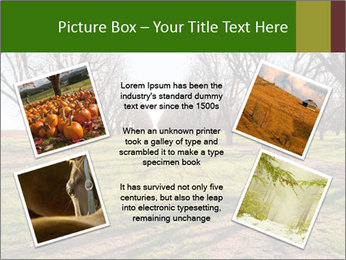 0000071883 PowerPoint Templates - Slide 24