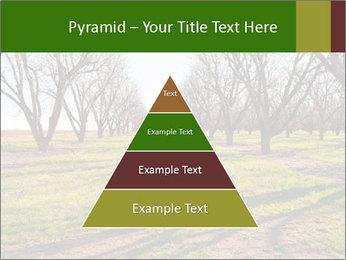 0000071883 PowerPoint Templates - Slide 30