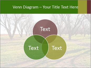 0000071883 PowerPoint Templates - Slide 33