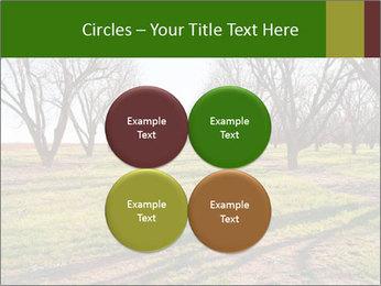 0000071883 PowerPoint Templates - Slide 38