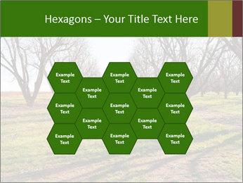 0000071883 PowerPoint Templates - Slide 44