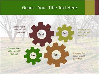 0000071883 PowerPoint Templates - Slide 47