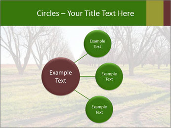 0000071883 PowerPoint Templates - Slide 79