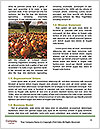 0000071883 Word Templates - Page 4