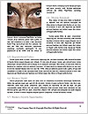 0000071885 Word Templates - Page 4