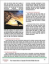0000071887 Word Template - Page 4
