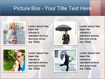 0000071898 PowerPoint Template - Slide 14