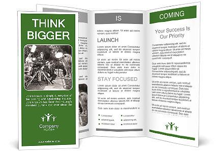 0000071902 Brochure Template
