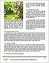 0000071912 Word Template - Page 4