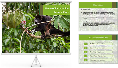 0000071916 PowerPoint Template