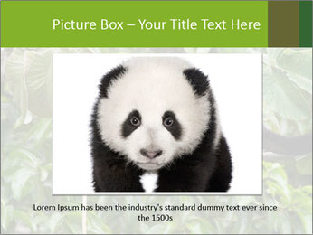 0000071916 PowerPoint Template - Slide 15