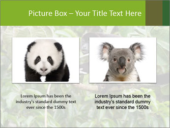 0000071916 PowerPoint Template - Slide 18
