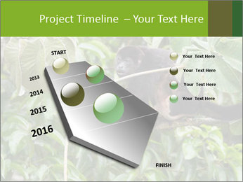 0000071916 PowerPoint Template - Slide 26