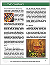 0000071920 Word Template - Page 3