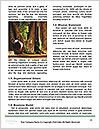 0000071920 Word Template - Page 4