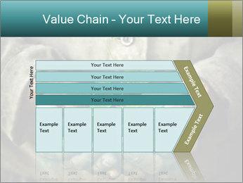 0000071923 PowerPoint Templates - Slide 27