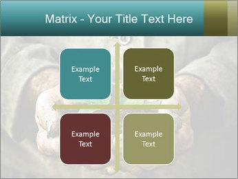 0000071923 PowerPoint Templates - Slide 37