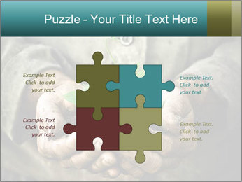 0000071923 PowerPoint Templates - Slide 43