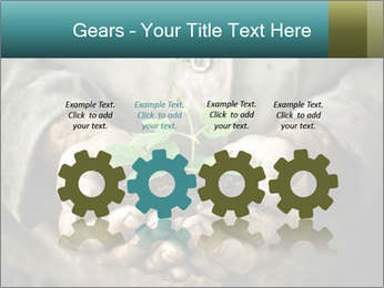 0000071923 PowerPoint Templates - Slide 48