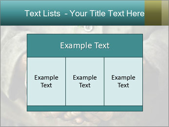 0000071923 PowerPoint Templates - Slide 59