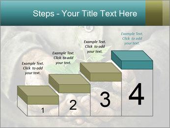 0000071923 PowerPoint Templates - Slide 64