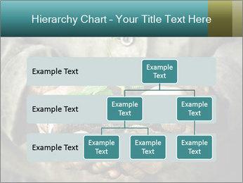 0000071923 PowerPoint Templates - Slide 67