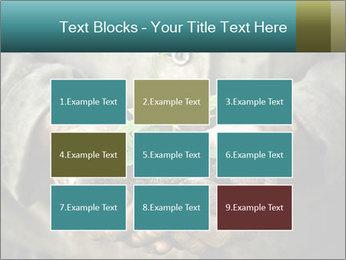 0000071923 PowerPoint Templates - Slide 68