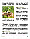 0000071923 Word Templates - Page 4