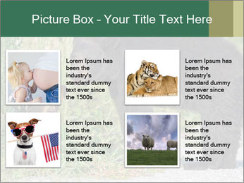 0000071927 PowerPoint Template - Slide 14