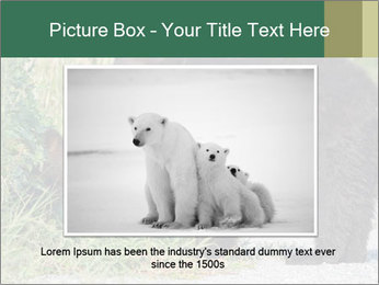 0000071927 PowerPoint Template - Slide 15