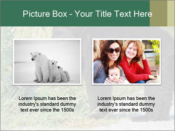 0000071927 PowerPoint Template - Slide 18