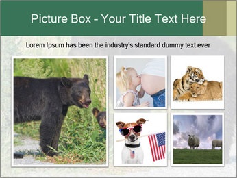 0000071927 PowerPoint Template - Slide 19
