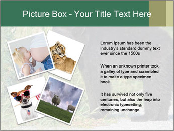 0000071927 PowerPoint Template - Slide 23
