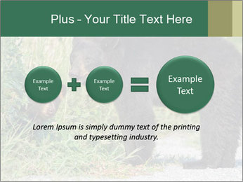 0000071927 PowerPoint Template - Slide 75