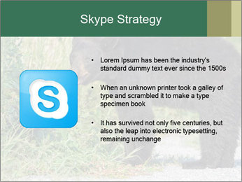 0000071927 PowerPoint Template - Slide 8